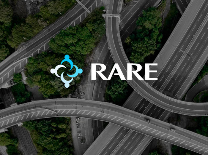 Rare Infrastructure Podcast Series